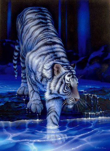 White Tiger 3d Wallpaper White Tiger Tattoo Tiger Wallpaper