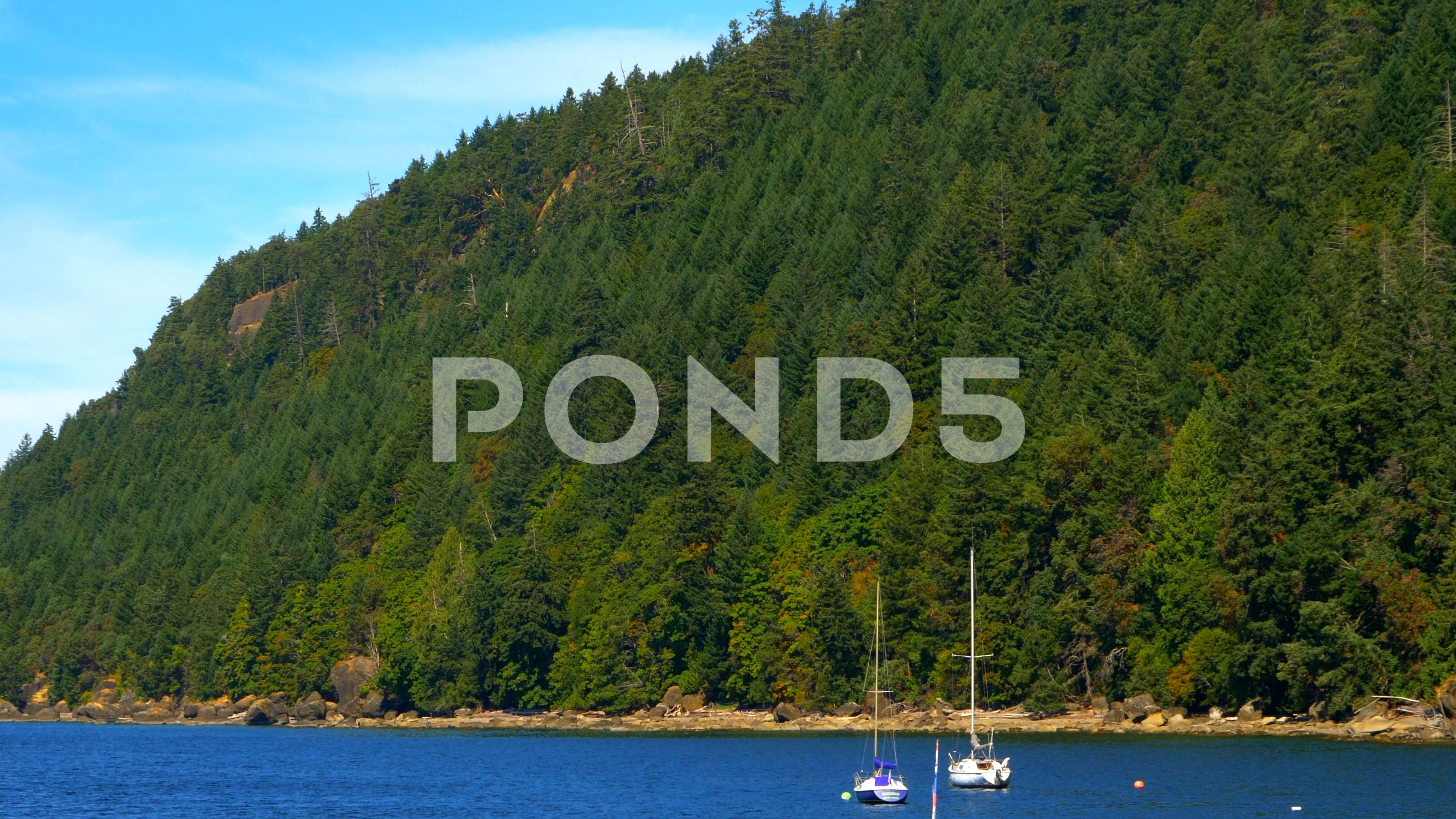 4k Harbor Islands Water And Forest Hill Nature Beach Landscape Sail Boats Stock Footage Forest Hill Nature Harbor Nature Beach Harbor Island Beach Landscape