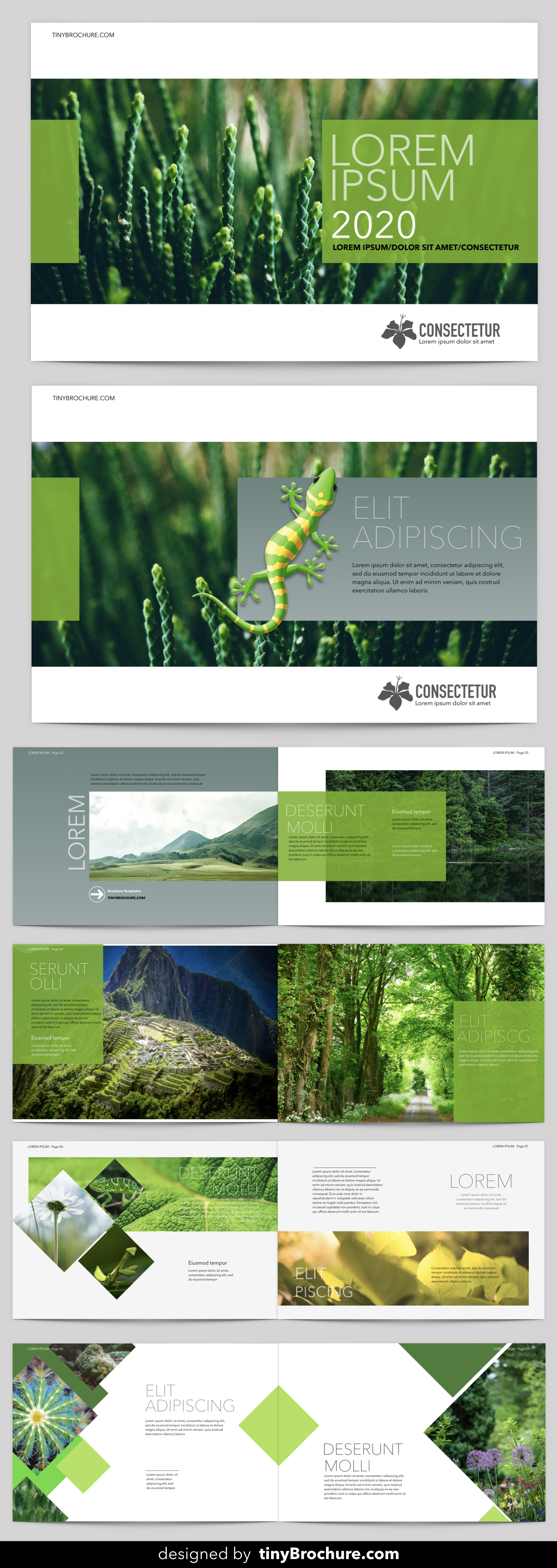 landscape brochure template word free download brochure template
