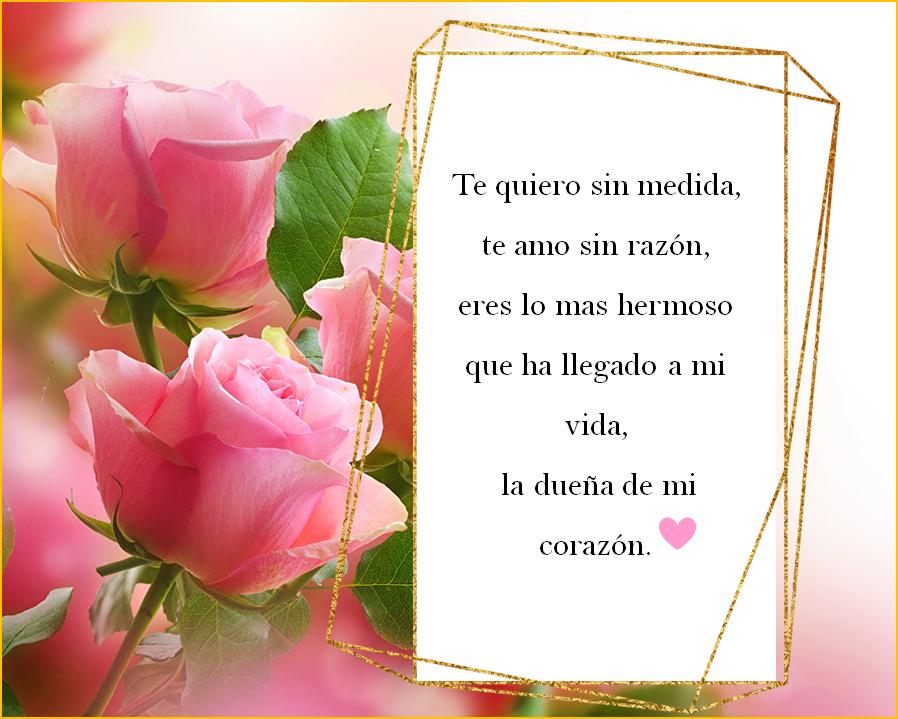Los 15 Mejores Poemas Cortos De Amor Del 2020 Poesía Frases Poema De Amor Poema Cortos De Amor Poemas De Amor Frases