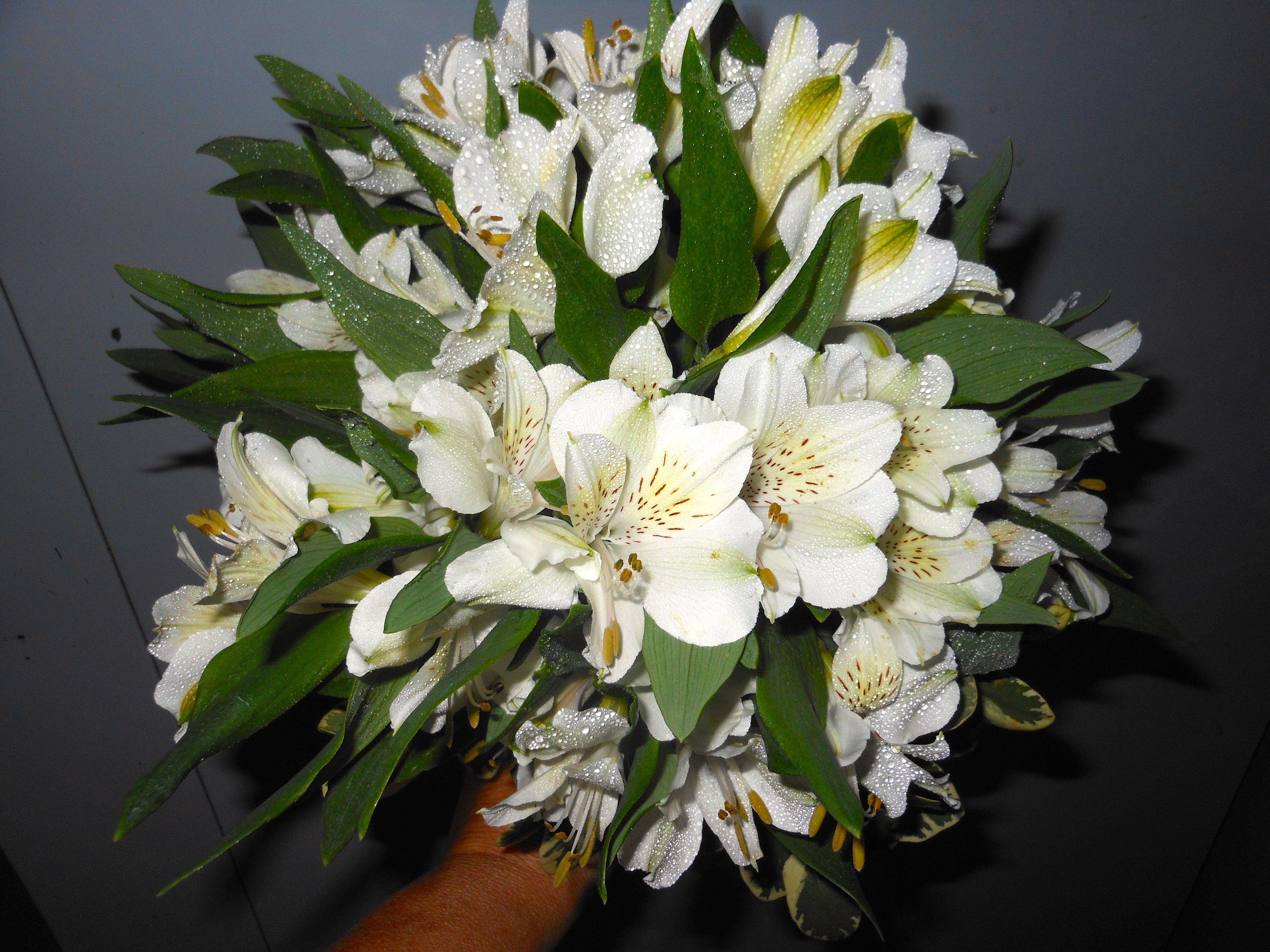 Beauk Florist Flores