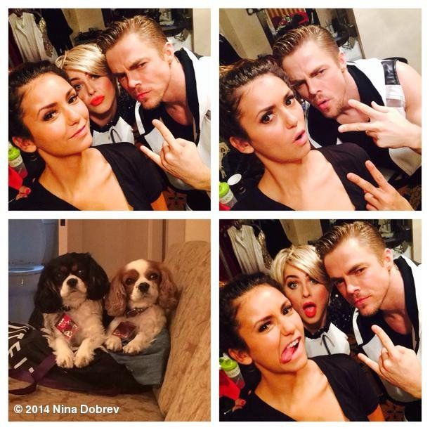 Pin for Later: The Vampire Diaries Stars Celebrate Summer With Puppies and Bikinis  Dobrev got snap-happy with her pals the Houghs! Source: Instagram user ninadobrev