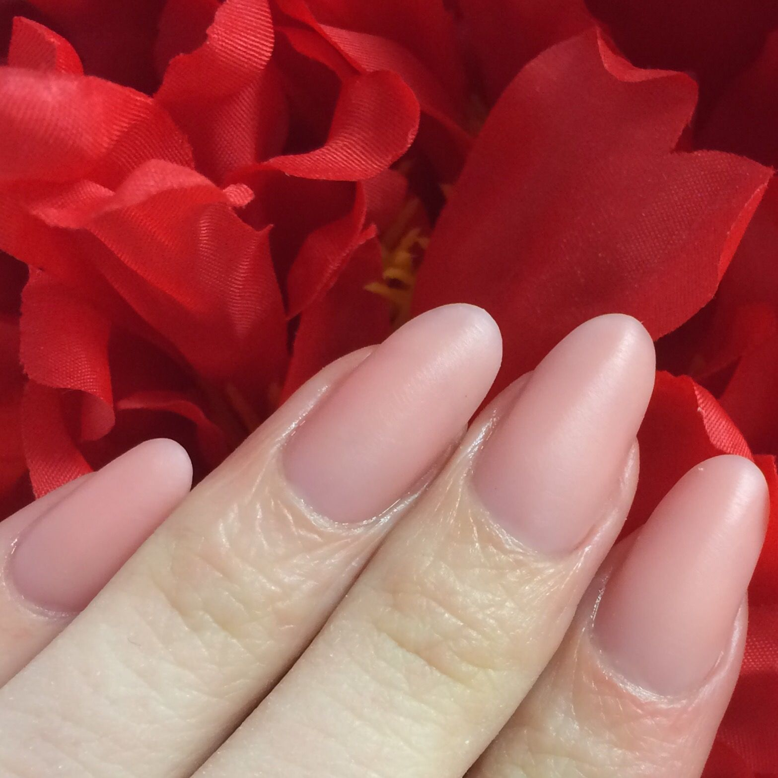 The Brand New Coverpink Polygel From Hand Nail Harmony And Nailharmonyuk Gelish Using Tips To Extend Hard Gel Nails Nails Polygel Nails