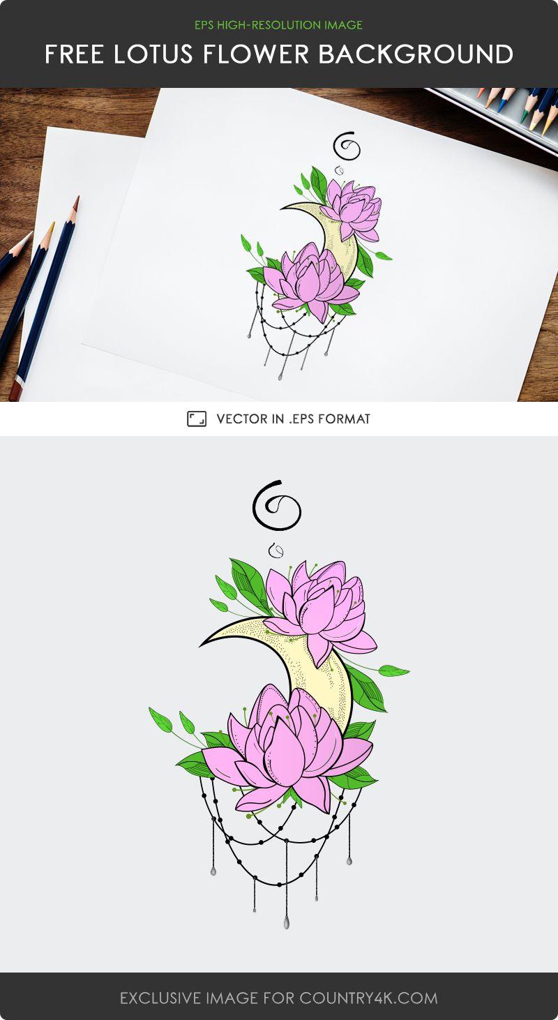 Free Lotus Flower Background Vector (с изображениями)
