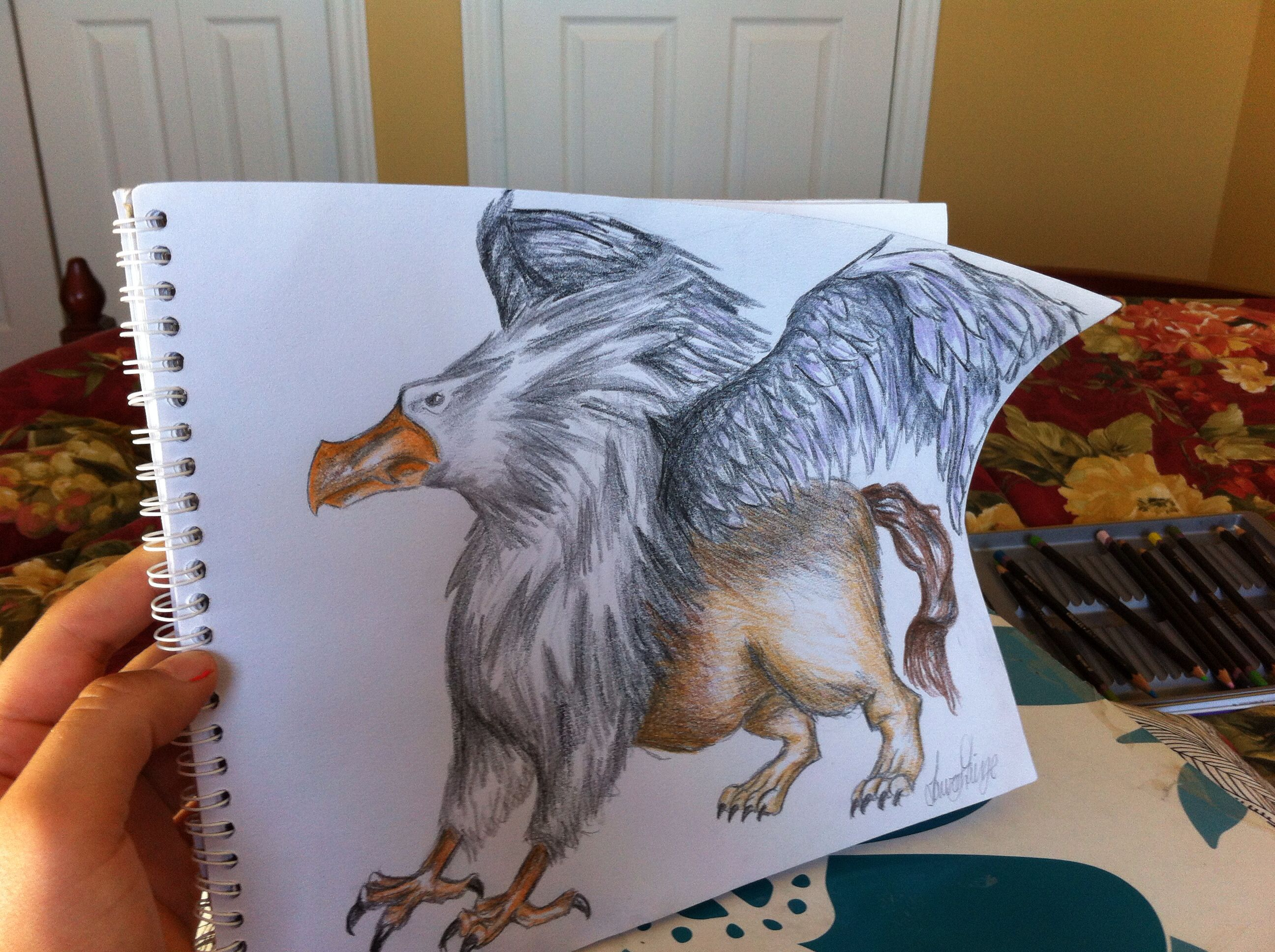 Pencil griffin drawing Griffin drawing, Art, Drawings