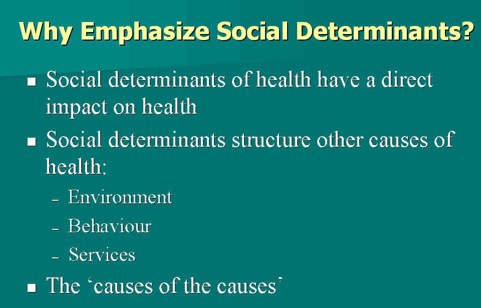 Pin By State Alexander On Social Determinants Of Health Social Determinants Of Health Community Health Nursing Nursing Study