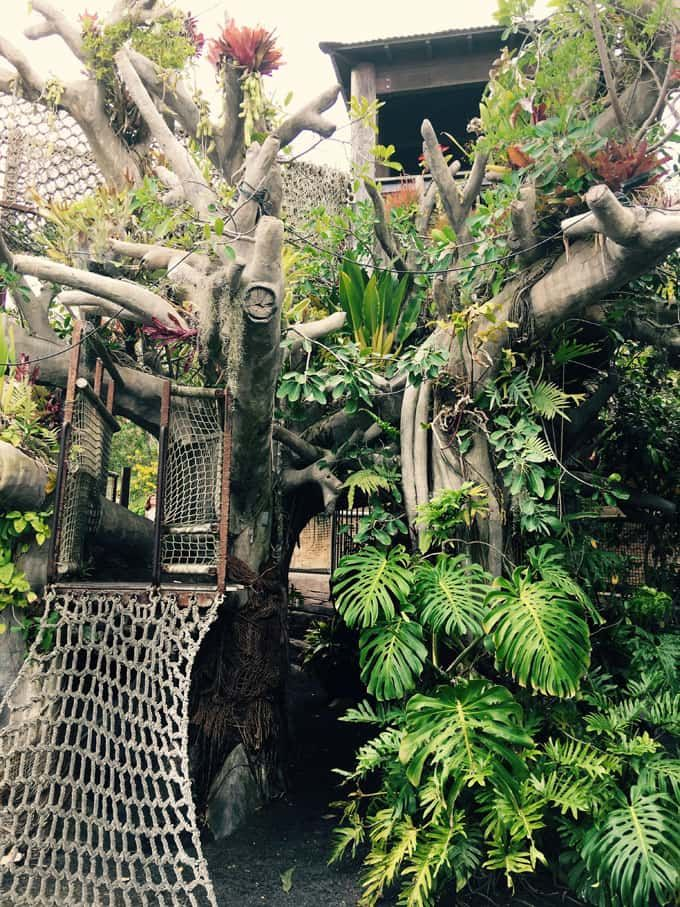 Visit California: 11 Magnificent Botanical Gardens From San Diego To ...
