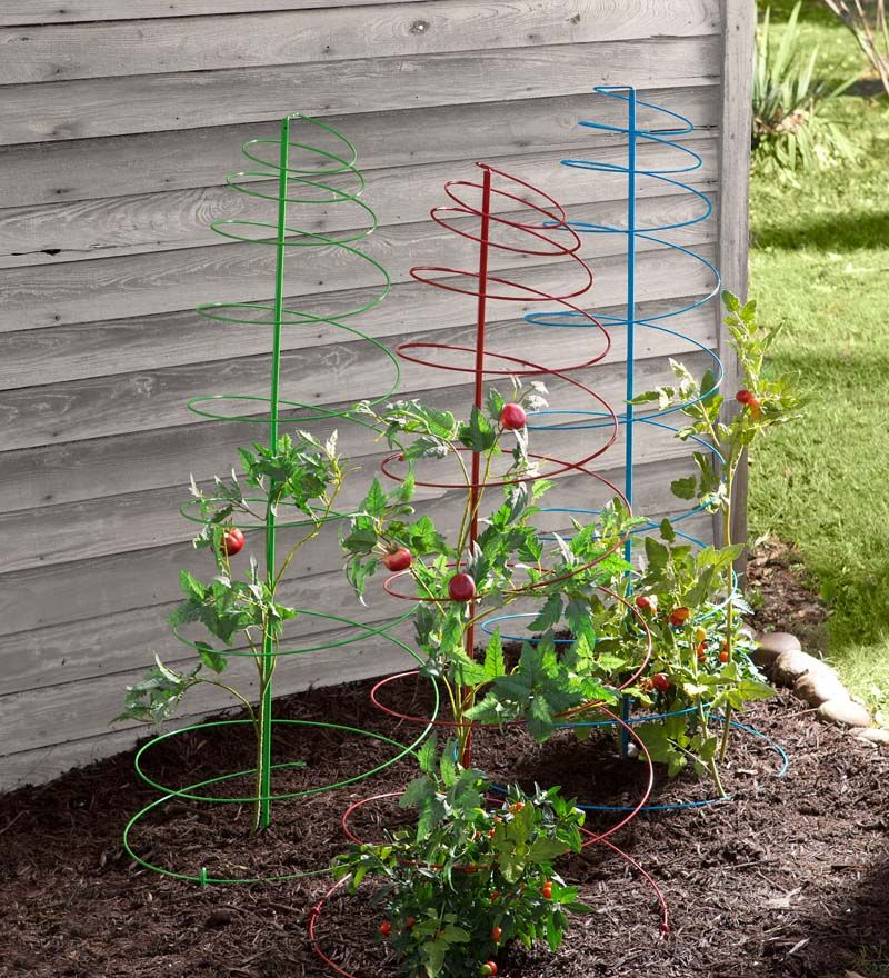 Colorful Spiral Plant Stakes Add A Little Fun And Color To 400 x 300