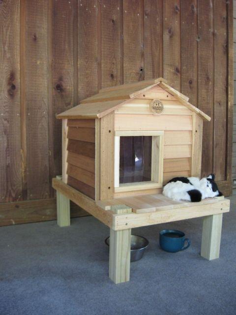 20u201d Cat House With Platform