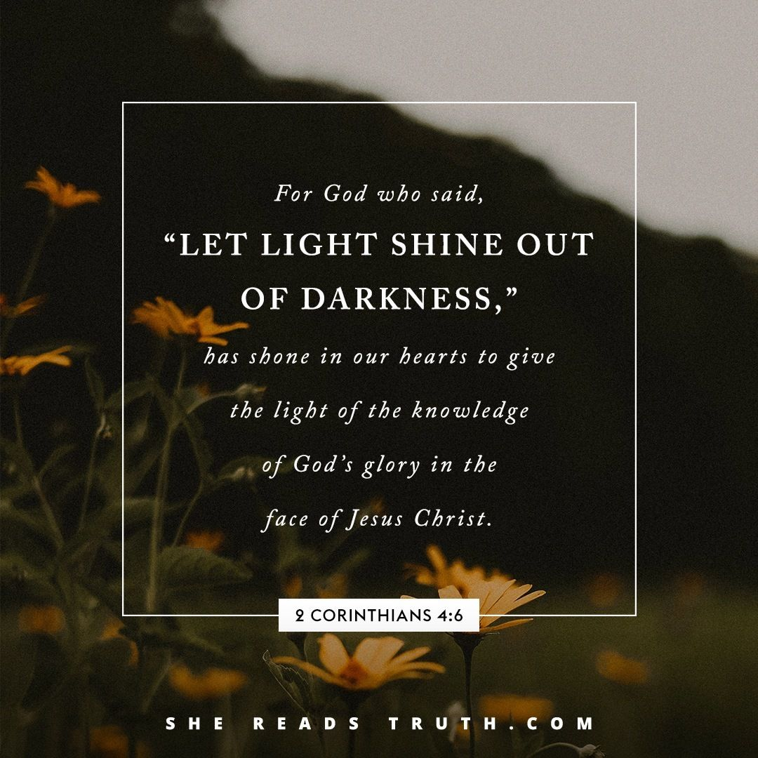 For God Who Said Let Light Shine Out Of Darkness Has Shone In Our Hearts To Give The Light Of The Words To Live By Quotes She Reads Truth Bible Jesus