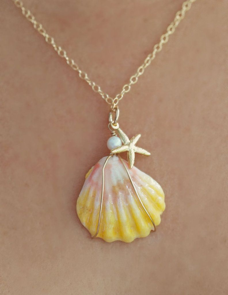 Sunrise Shell Necklace with14kt Gold Filled chain fresh water Pearl