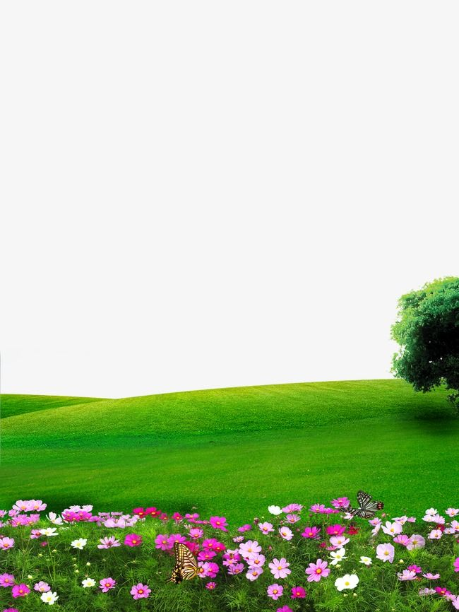Millions Of Png Images Backgrounds And Vectors For Free Download Pngtree Beautiful Nature Pictures Beautiful Images Nature Nature Images