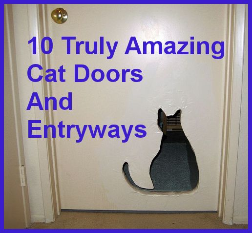 10 Truly Amazing Cat Doors And Entryways & Replaced our ugly cat door with an Ikea picture frame only $5! The ... Pezcame.Com