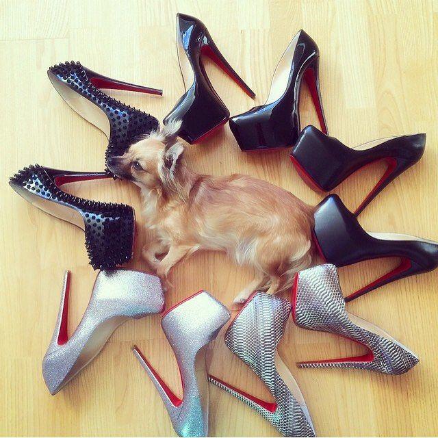 I'm a shoe dog