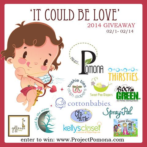IT COULD BE LOVE 2014 win $25 gift certificate to @Rockin' Green Eco-Friendly Cleaning Products