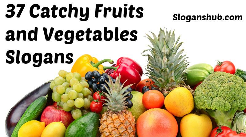 Fruits and Vegetables Slogans | Food Slogans | Pinterest ...