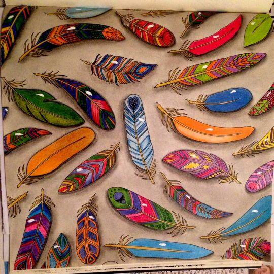 Feathers Enchanted Forest Penas Floresta Encantada Johanna Basford Coloring BookEnchanted