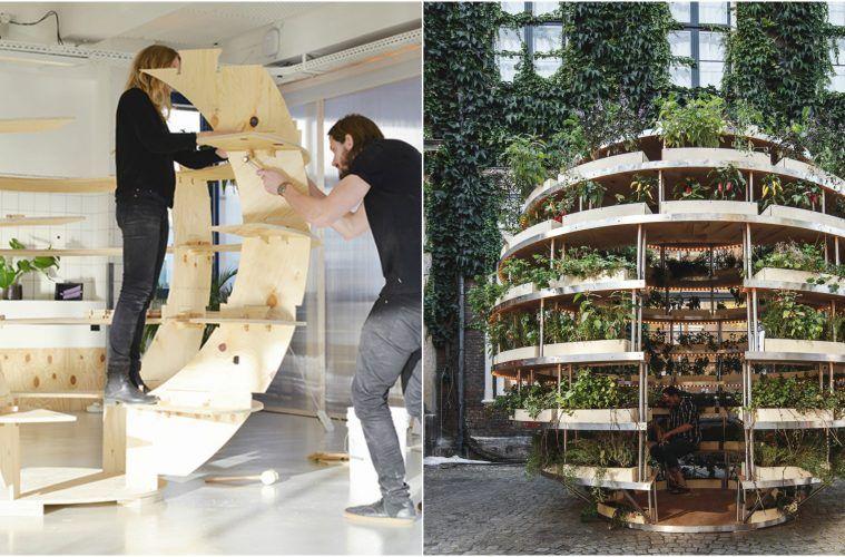 Collective Evolution On Garden Planning Outdoor Gardens
