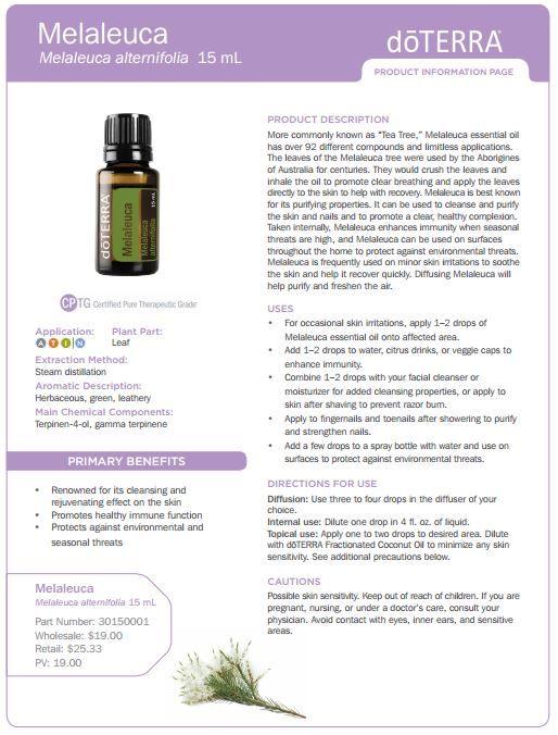 Doterra Melaleuca Essential Oil Uses Tea Tree Doterra