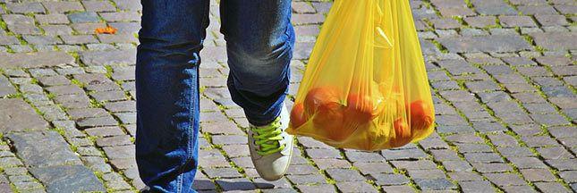 L'interdiction des sacs plastiques à usage unique, décidée en août 2015, devait intervenir au 1er janvier 2016. Elle devrait être effective début avril seulement. Vu que pas moins de 17 milliards de sacs plastiques à usage unique ont été consommés en...