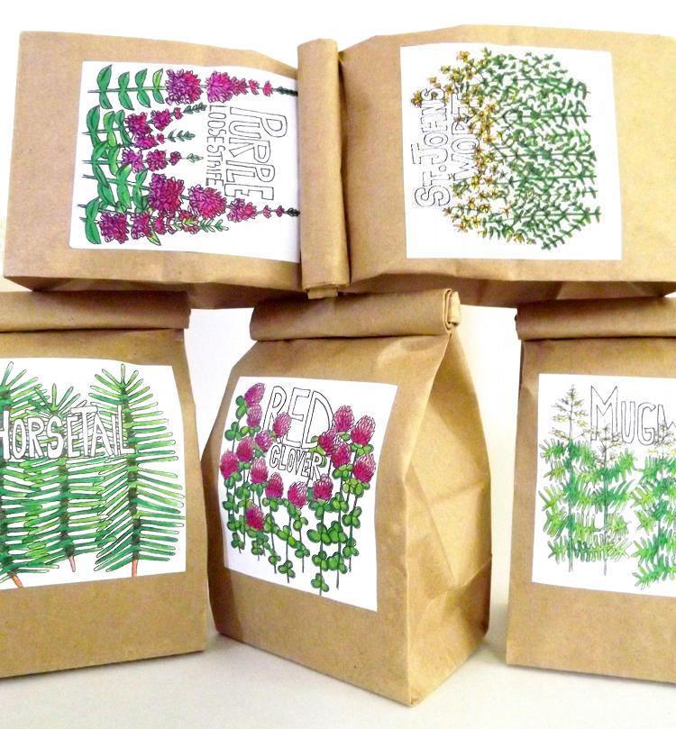 Diy Basic Tea Making How To Make Custom Herbal Blendedicinal Home Remedy Teas For A Healthier You Naturally