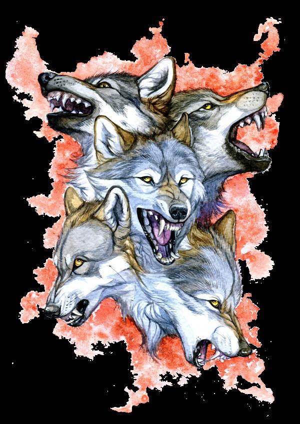 Anger Artworktee Wolf Art Animal Drawings Canine Art