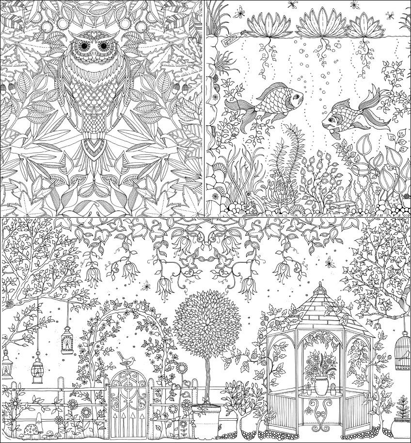 Coloring Book Secret Garden : Secret garden coloring book johanna basford pinterest