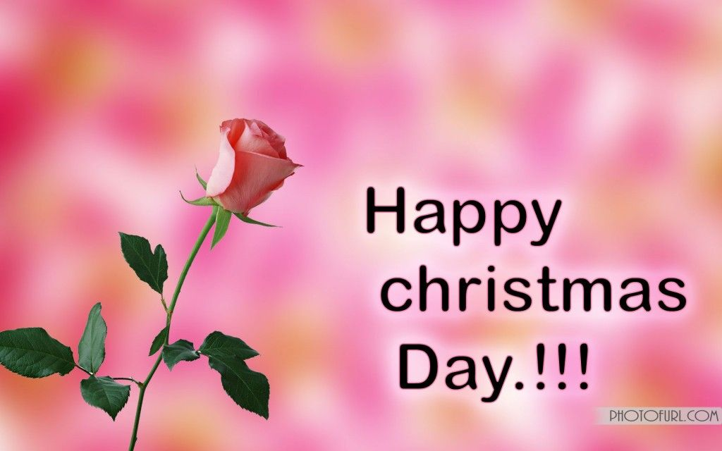 Free Download Christmas Day Pictures Wallpapers Pics