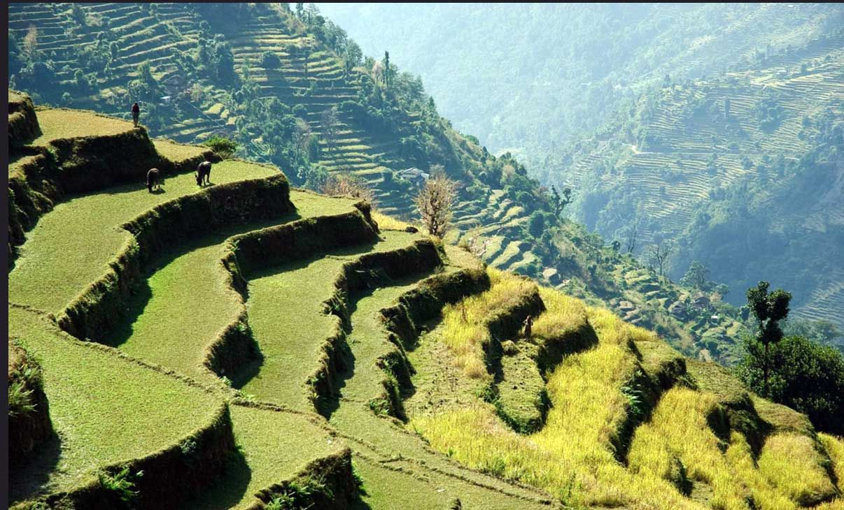 Pin by Little Voyage on 10 Days Enchanted Nepalese