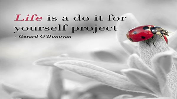 Thursday Thought  Life is a do it for yourself project – Gerard O'Donovan