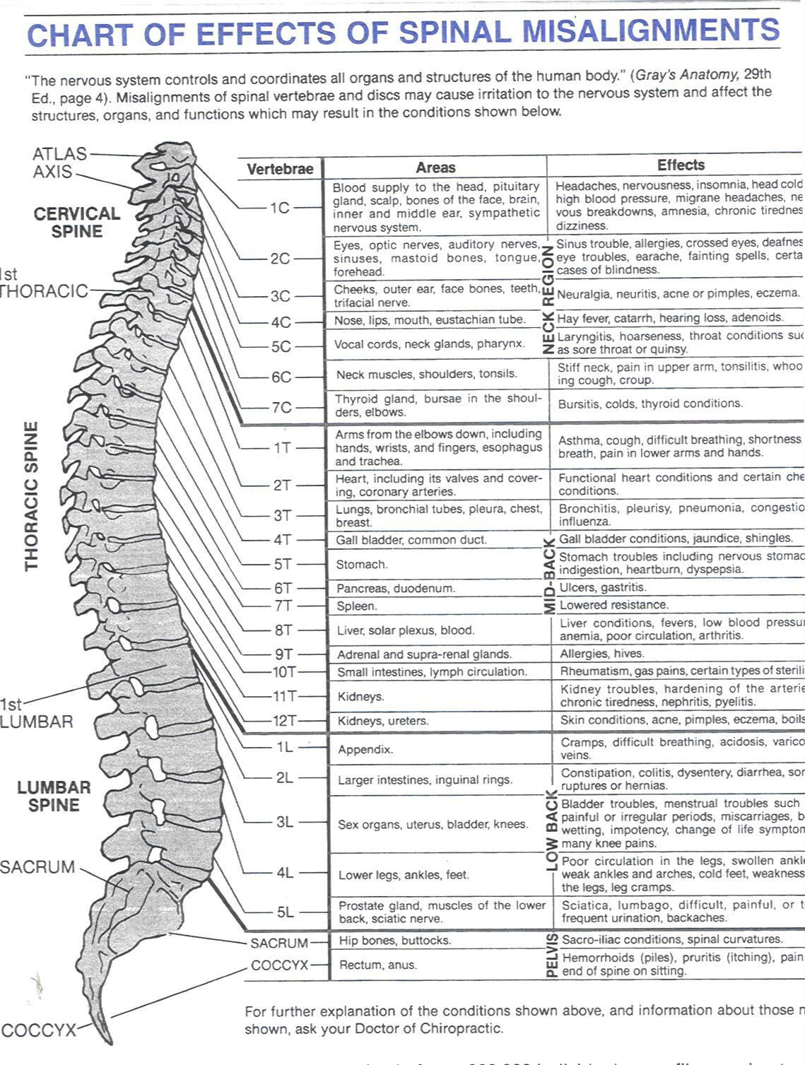 Chronic Low Back Pain - annals.org