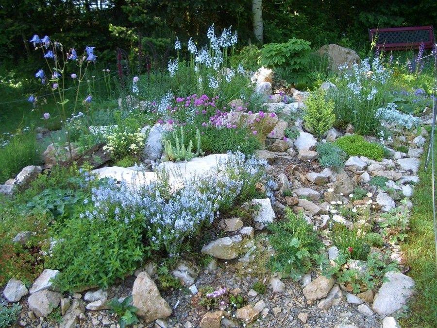 Http://www.gartenmax.net/wp Content/uploads/uploads Bonsai Baum Gestaltung  Ideen Steingarten Modern | Garten | Pinterest