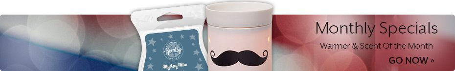 May Scent and Warmer of the month Https://jamiecreamer.scentsy.us