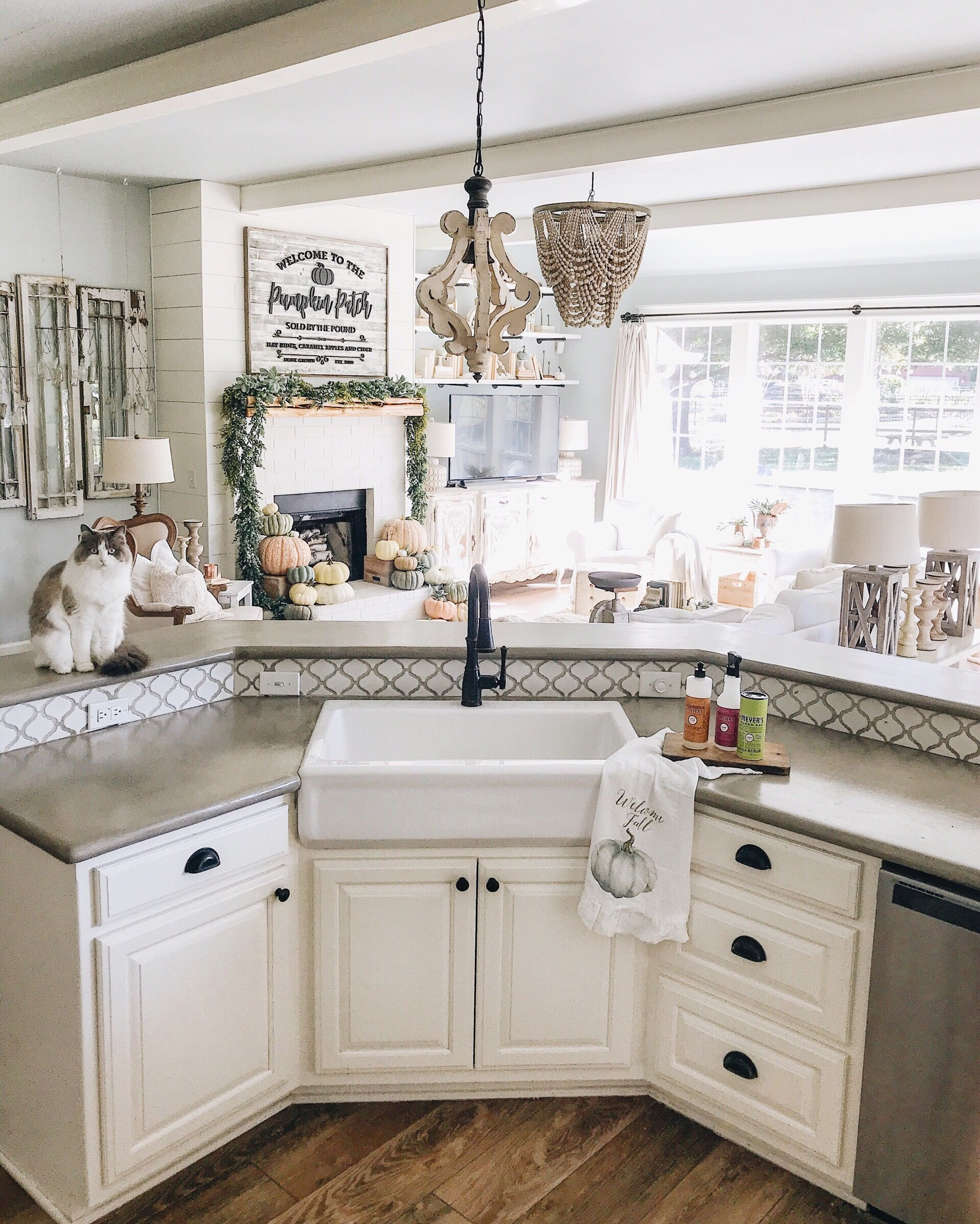 cottage farmhouse kitchen sink and living