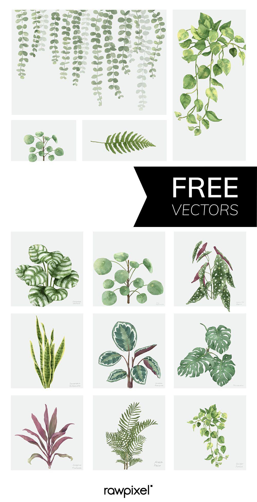 Download Free Vectors Of Watercolor At Rawpixel Com กราฟ กด ไซน