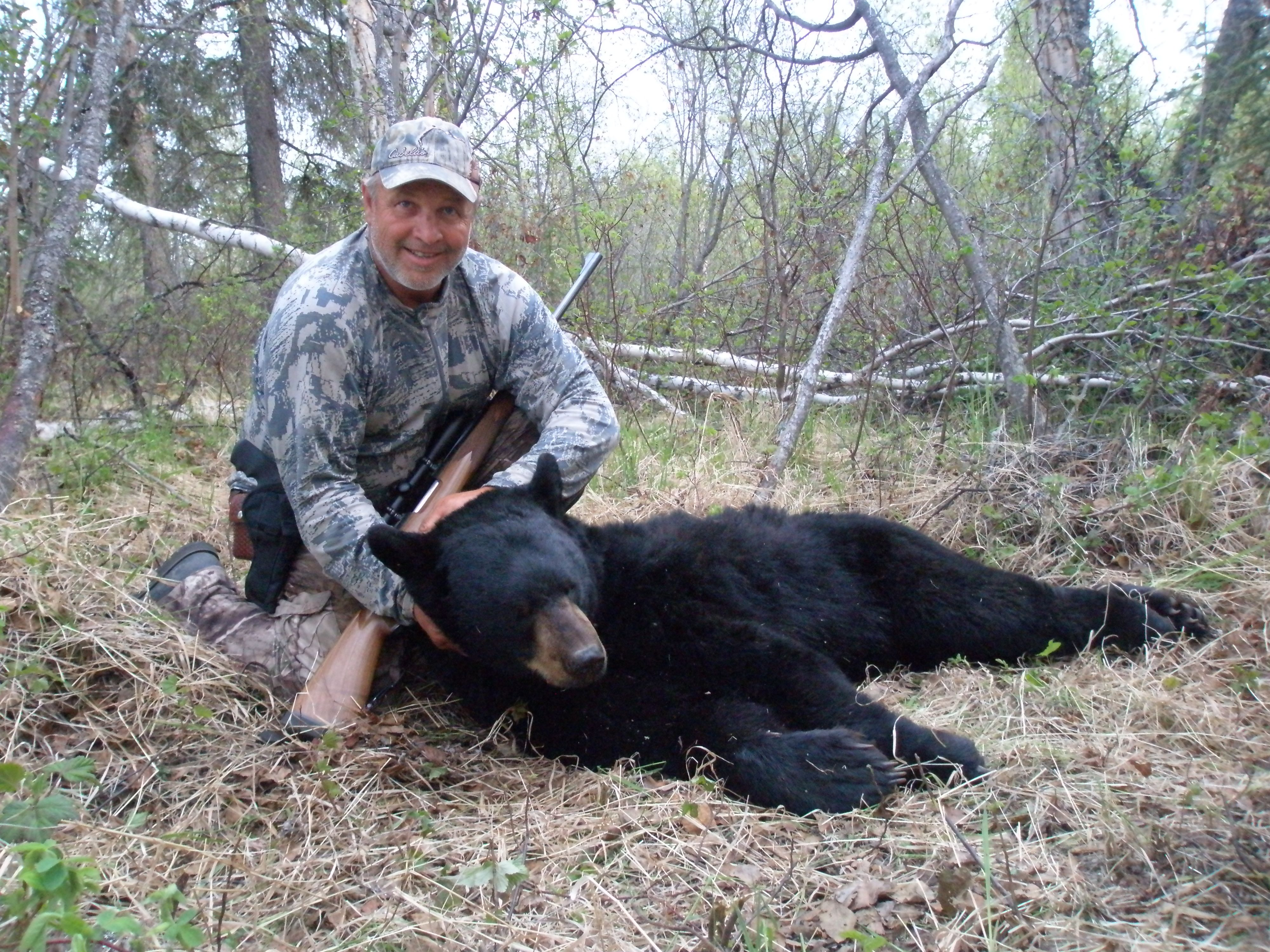 spring black bear hunting clearwater alaska outfitters. Black Bedroom Furniture Sets. Home Design Ideas