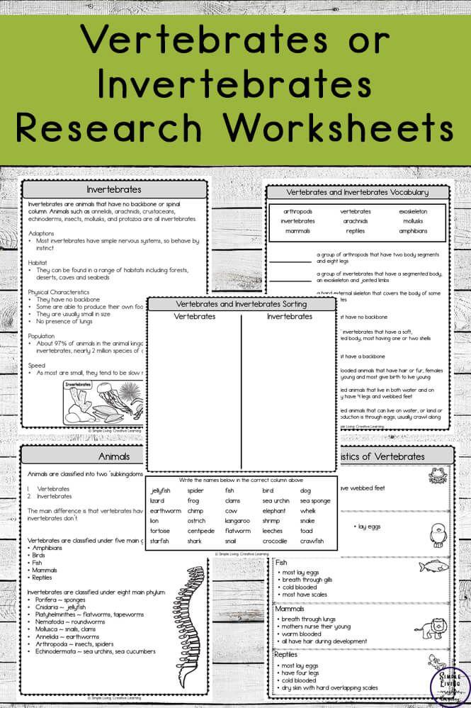 Vertebrates and Invertebrates Research Worksheets ...