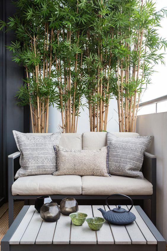 Bambú Para Conseguir Intimidad En La Terraza Balcones