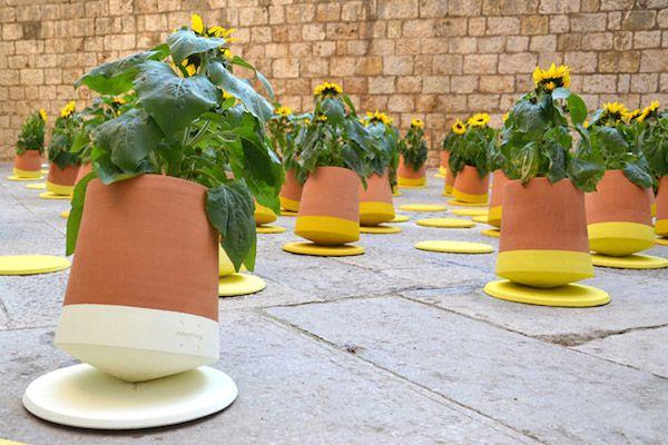 A Unique Flower Pot That Rolls In Order To Get More Sunlight Designtaxi Com 화분 디자인 식물 독특한 꽃