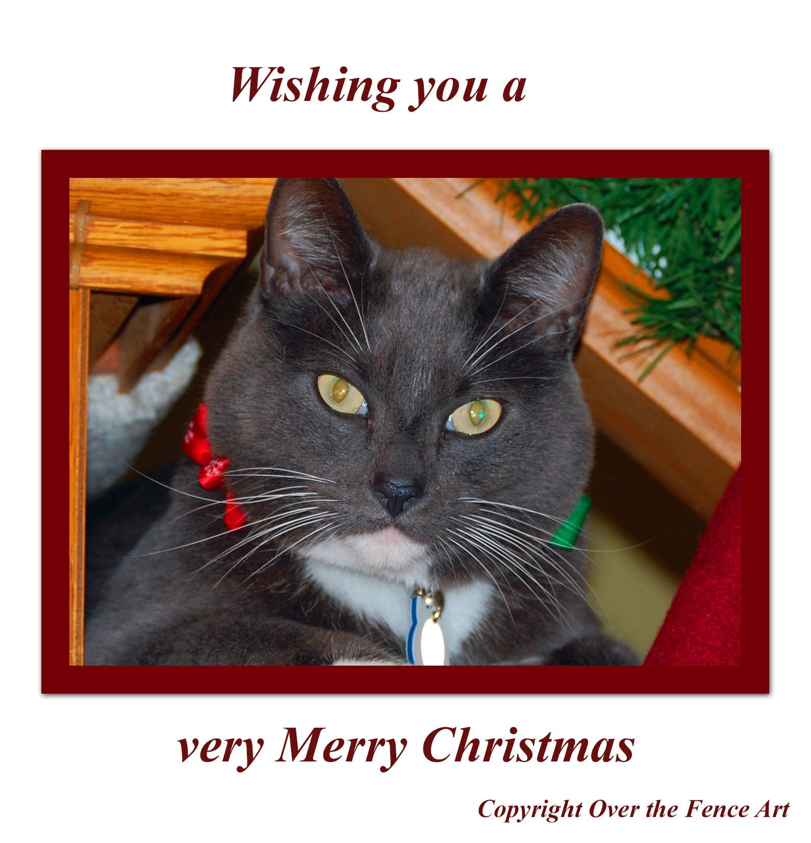 Cat Christmas Card Cat wishes you a very Merry Christmas by ...