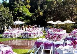 Quinceanera Decorations Backyard Party Outdoor Party Sweet