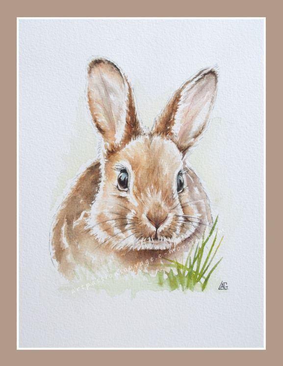 Aquarell Hase Brigitte Fuchs Malerei Aquarell Tiere