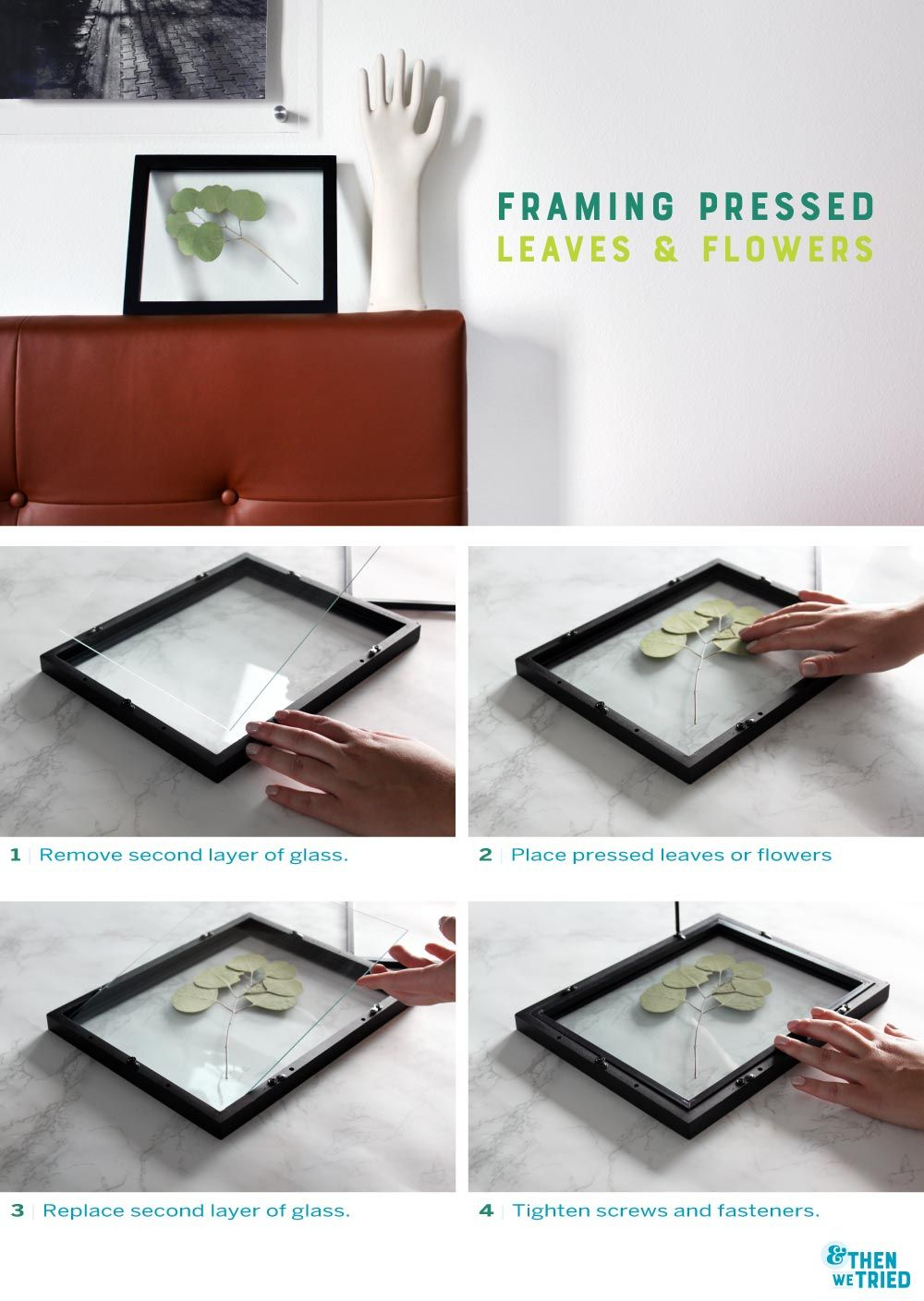 Framing Pressed Leaves and Flowers | Diys, Leaves and Flowers