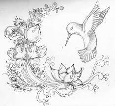 Resultado de imagen para colibri y flor dibujo