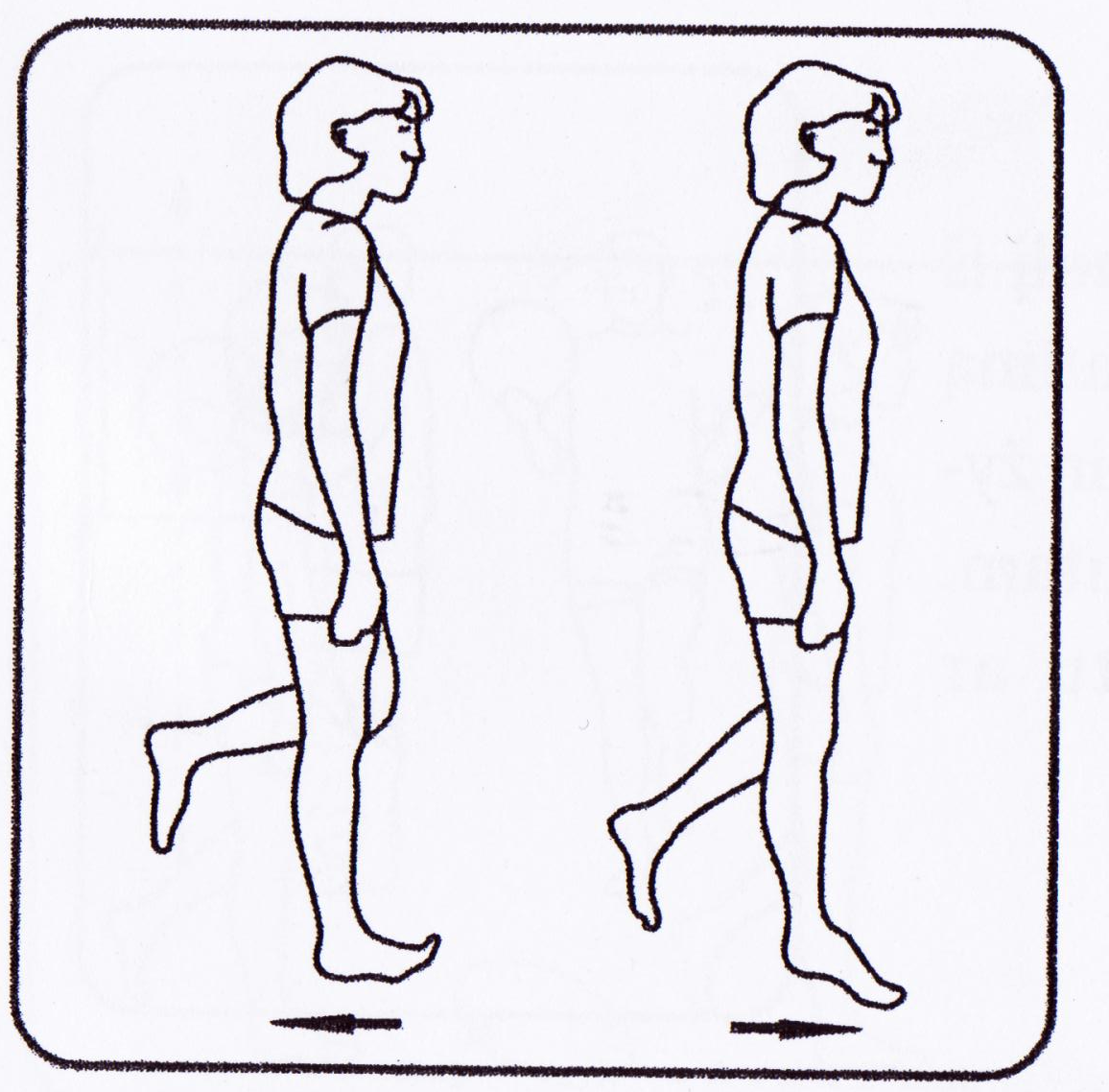 Balance and coordination exercise for multiple sclerosis,ms,