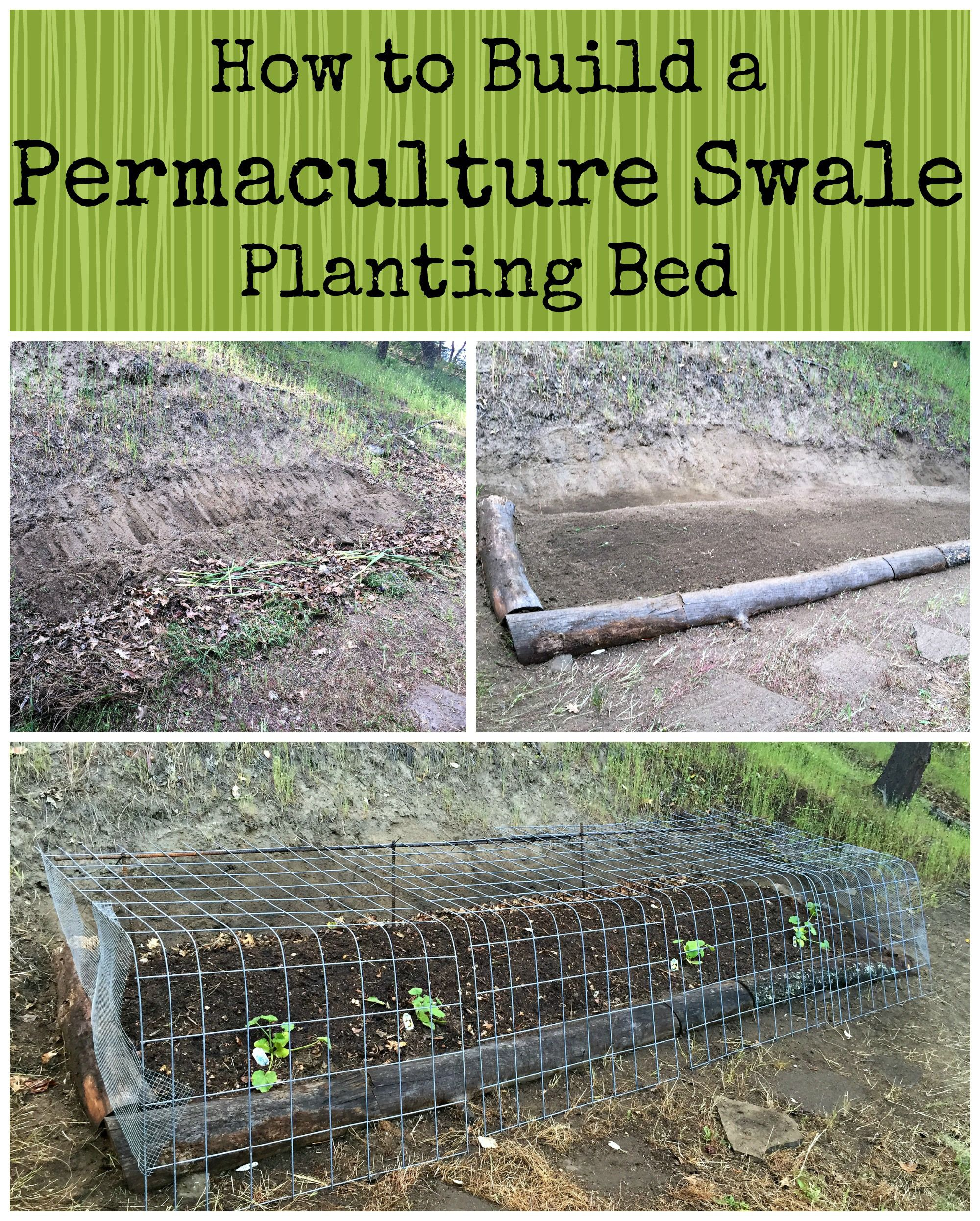 Questions about the recycled plastic raised garden bed 3 x 6 x 11 quot - How To Build A Permaculture Swale Planting Bed
