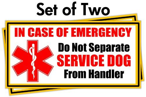 Put on Car Service Dog Emergency Car Stickers Set of 2 Home Windows or Door