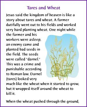Tares And Wheat Jesus Parable Kids Korner Biblewise Bible