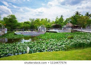 FLORIDA MIAMI JUNE 2018 Everglades airboat tour boat everglades airboat florida landscape backgrounds grass waterUSA FLORIDA MIAMI JUNE 2018 Everglades airboat tour boat...
