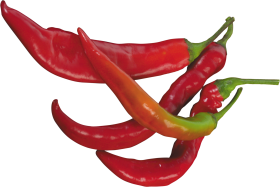 Download Red Pepper Png Images Background Png Free Png Images Stuffed Peppers Red Chili Peppers Image